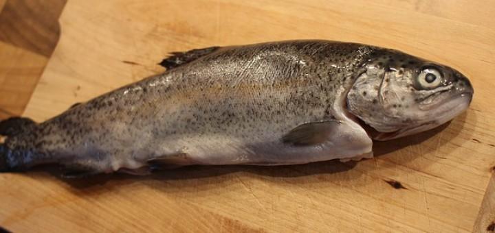 Forell oomega-3 rasvhappe ja valgu rikas kala.