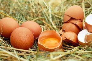 Toidutalumatus võib olla sageli põhjustatud munast.