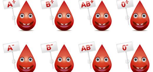 Veregrupidieet määrab menüü vastavalt veregrupile.