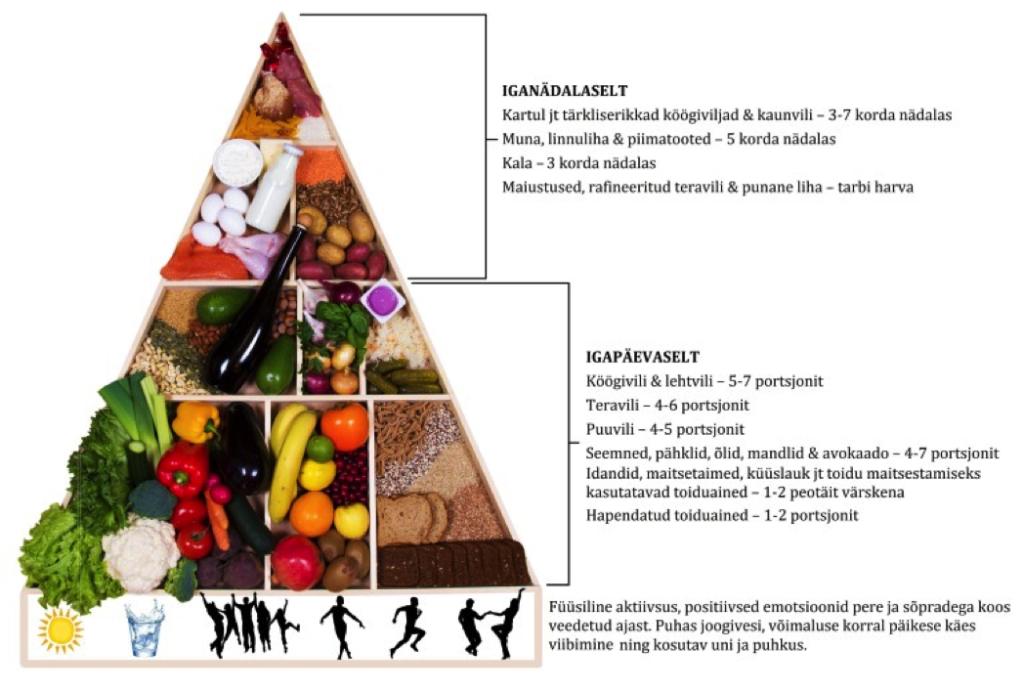 Eesti Toitumisteraapia Assotsiatsiooni toidupüramiid.