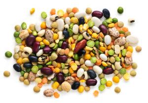 Paleodieet välistab inimese poolt aretatud toiduained, nagu näiteks kasulikud ja valgurikkad kaunviljad.